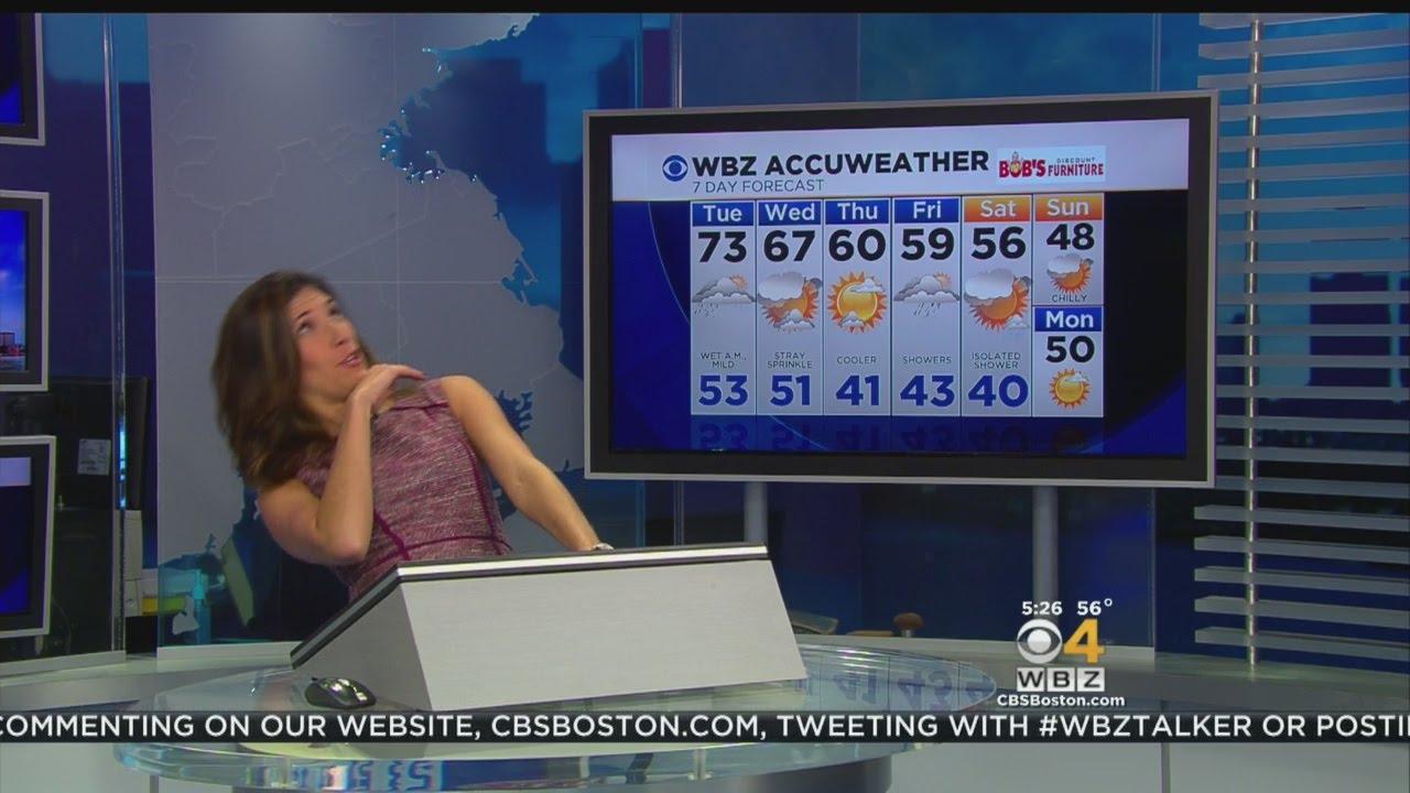 WBZ Meteorologist Dodges Fly On Live TV