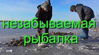 Рыбалка на окуня осенью Сибирь Омская Саргатское Бажениты