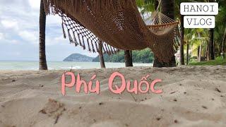 [Vlog] 하노이 브이로그 | 푸꾸옥 브이로그 | 푸…
