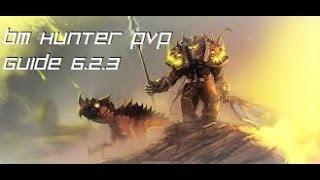 6 2 3 bm hunter pvp guide