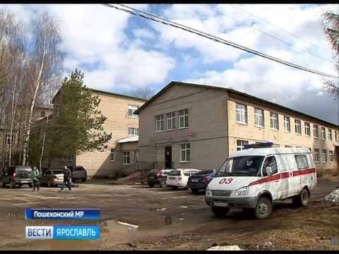 20 семей из Пошехонского района стали участниками проекта «Российские геномы»