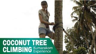 Coconut Tree Climbing | Kumarakom Experience
