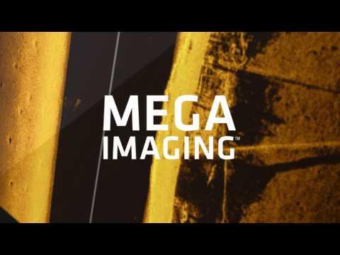 MEGA Imaging - Saltwater