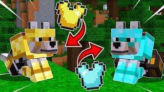 ELMAS KURT VS ALTIN KURT! KURTLARA SET NASIL GİYDİRİLİR? - Minecraft