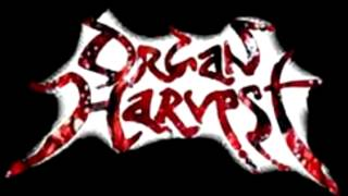 Organ Harvest - Dead But Raped