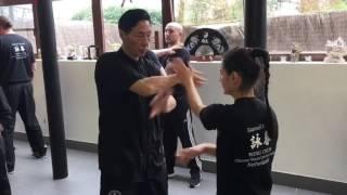 Grandmaster Kwok - Chi Sao