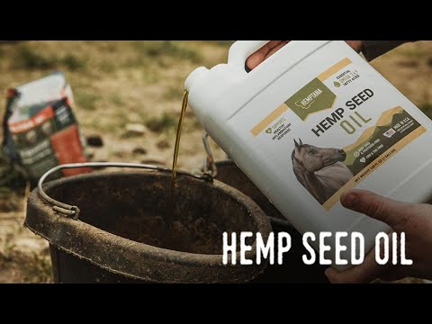 Hemptana: Hemp Seed Oil