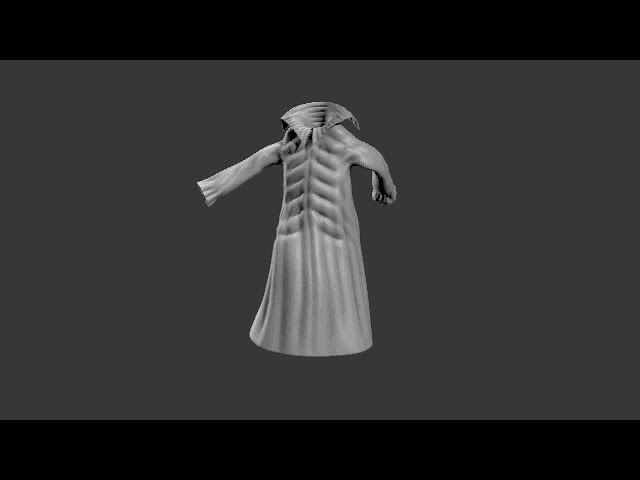 Low Res Cloth Test