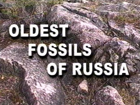 Oldest fossils of Russia