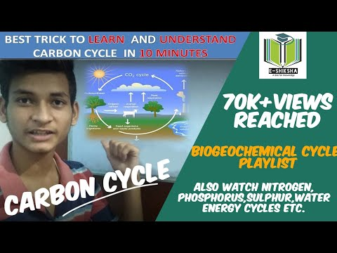 Carbon Cycle 9th Class MATHS POWER