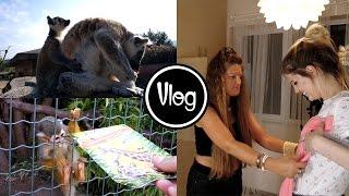 Αττικό Ζωολογικό Πάρκο & φορέματα για γάμο | i Mikri Ollandeza