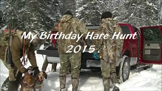 My Birthday Hare Hunt - 2015(beagle Boys Rabbit Hunting)