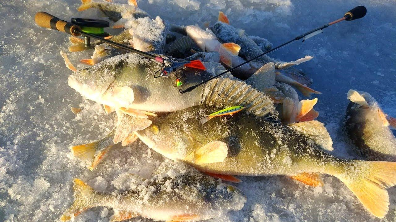 Рыбалка на красноярском море ноябрь 2019