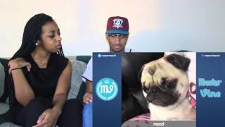"Couple Reacts : Impossible ""Try Not To Laugh or Grin"" Challenge By Master Vines Reaction!!"