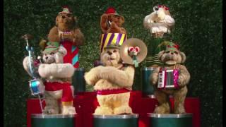 bear band 6 2009