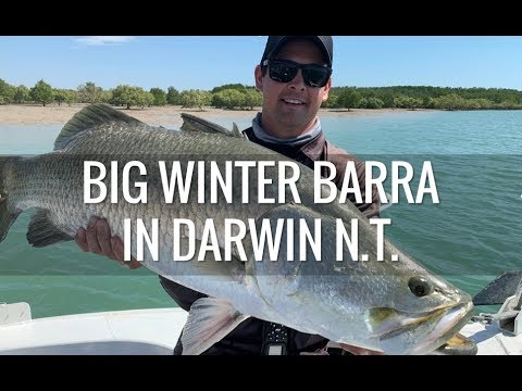 Fishing For Big Winter Barra In Darwin