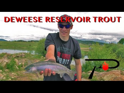Colorado's DeWeese Reservoir Trout Fishing