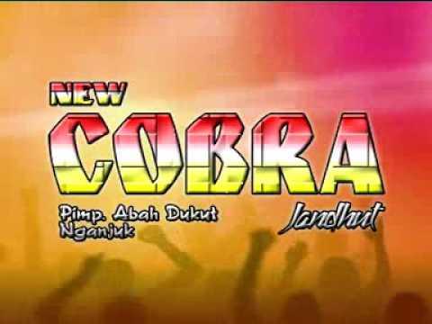 New Cobra - Edan Turun (Live Malang)