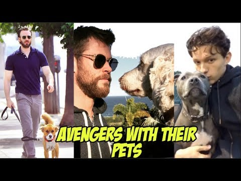Avengers Cast With Their Pets -  Cute and adorable Animals with The MCU Cast