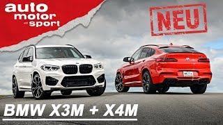 NEU: BMW X3M + X4M: Echte SUV-Sportler?   auto motor und sport