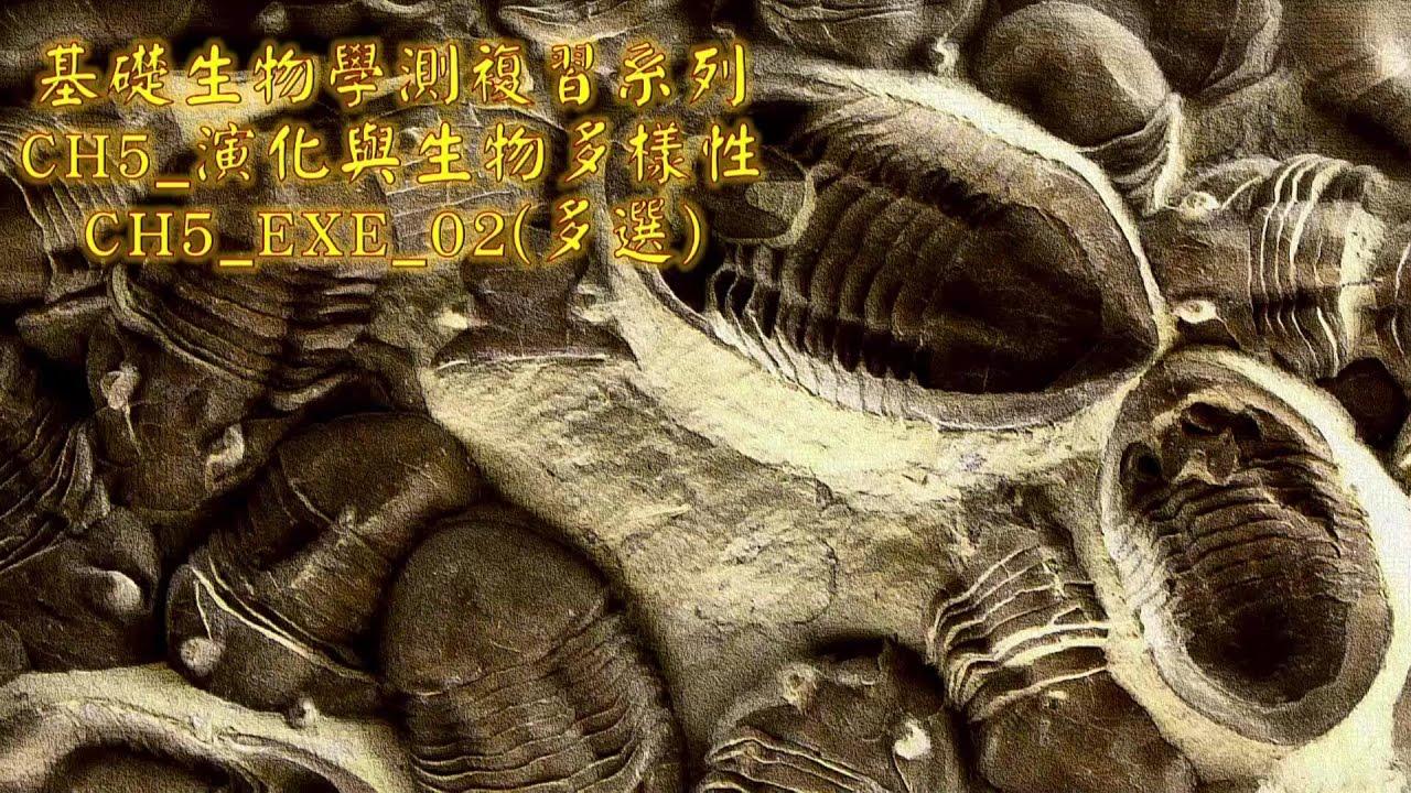 基礎生物學測複習系列_第五章_演化_EXE_02 (多選題) - YouTube