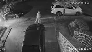 Bayonne Car Thief Exit