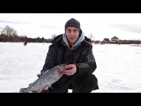 Рыбалка | Москва и подмосковье |Платный водоём