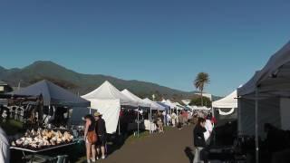 Welcome to the Maui Swap Meet!