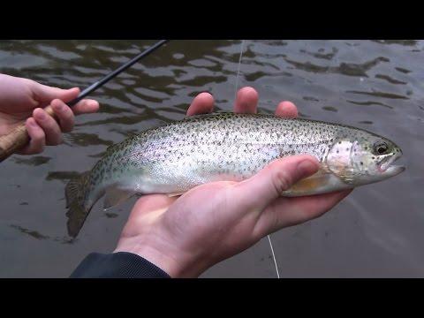 Fly Fishing Pennsylvania 2015