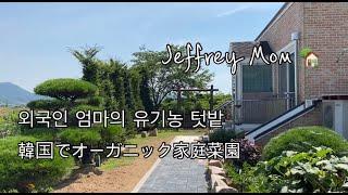 [한일커플/日韓カップル]유기농 텃밭 가꾸기/韓国家庭菜園…