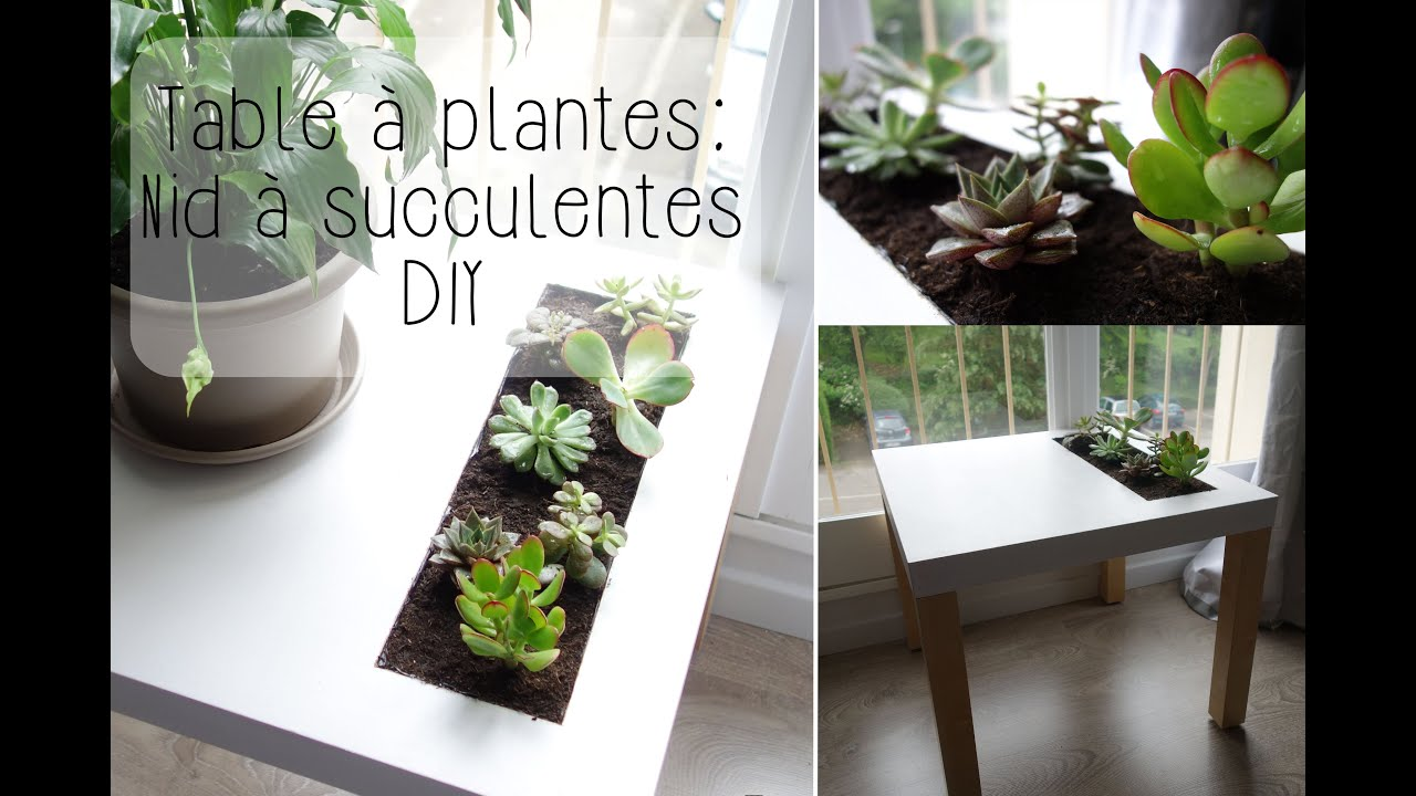 Diy table plantes ikea nid succulentes youtube for Ikea plantes