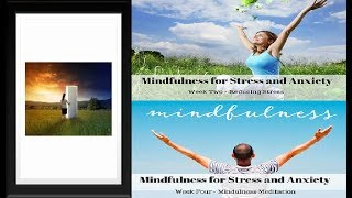 4 Week Mindfulness Meditation Course Review - Does It Work or Scam?