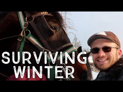 How to Survive a North Idaho Winter: Horse-Drawn Sleigh Ride