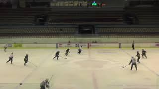 Хоккей ЛНХЛ Заводы-Легион 19.12.2017 г. 2 пер. Пермь