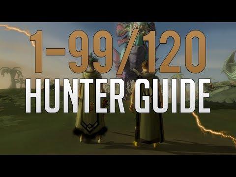 Runescape 3 - 1-99/120 Hunter Guide 2019/2020