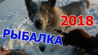 Зимова Риболовля 2018. Відкриття сезону 01 січня 2018