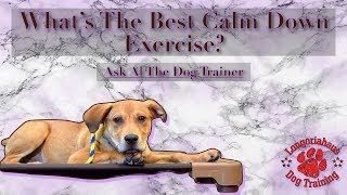 What's The Best Calm Down Exercise - Tips From Al the Dog Trainer