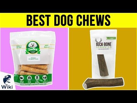 10-best-dog-chews-2019
