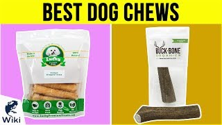 10 Best Dog Chews 2019