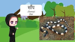 Belajar Bahasa India Mengenal Nama Hewan by Pesona Bahasa