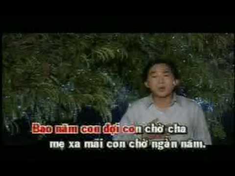 Sa Mưa Giông - Kim Tử Long