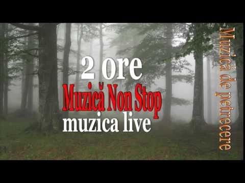 2 ORE MUZICA DE PETRECERE SI VOIE BUNA PENTRU ROMANII PETRECARETI