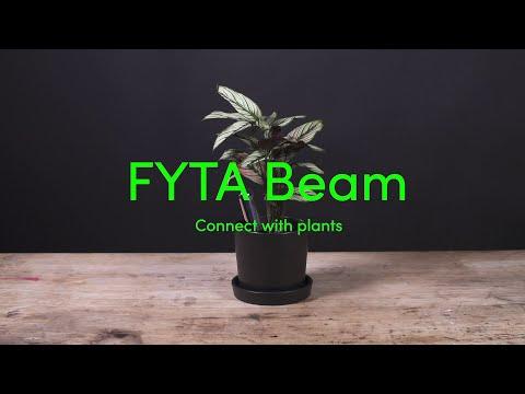 Dieser Sensor soll Pflanzen vor dem Eingehen retten