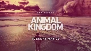 Трейлер 3 сезона По волчьим законам | Animal Kingdom Season 3 Trailer