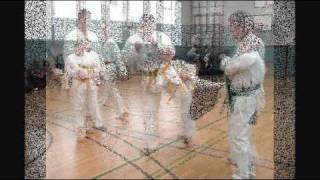 Taekwondo-Prüfung  08.04.2011 Budosport - Sakar