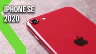 iPhone SE 2020 ANÁLISIS: Recuperar el pasado es romper con el presente