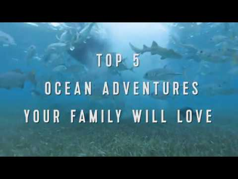 Royal Caribbean Top 5: Ocean Adventures Your Family Will Love