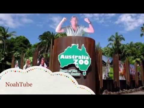 NoahTube - The Kids Review - Australia Zoo - The Ultimate Wildlife Adventure