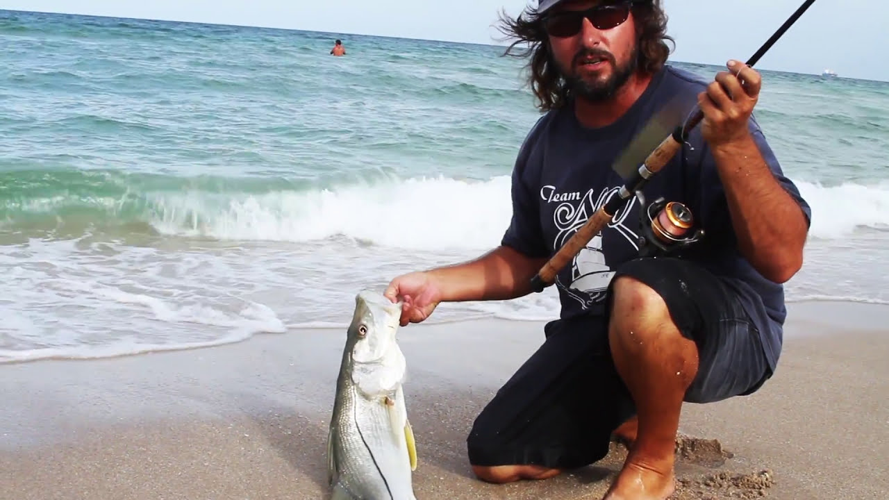 snook fishing on the beach live bait - youtube, Hard Baits