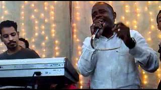 صوت النيل الاستاذ عادل عراب اغنية  النوبة والثورة